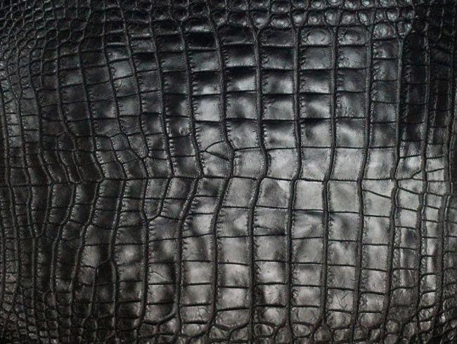 Cuero de piel de cocodrilo para la fabricación de chamarras, zapatos, bolsos, cinturones y billeteras
