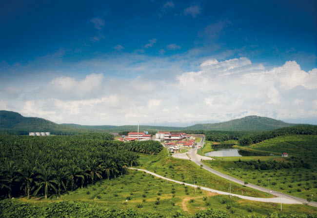 Elphil Estate and Palm Oil Mill in Perak, Malaysia